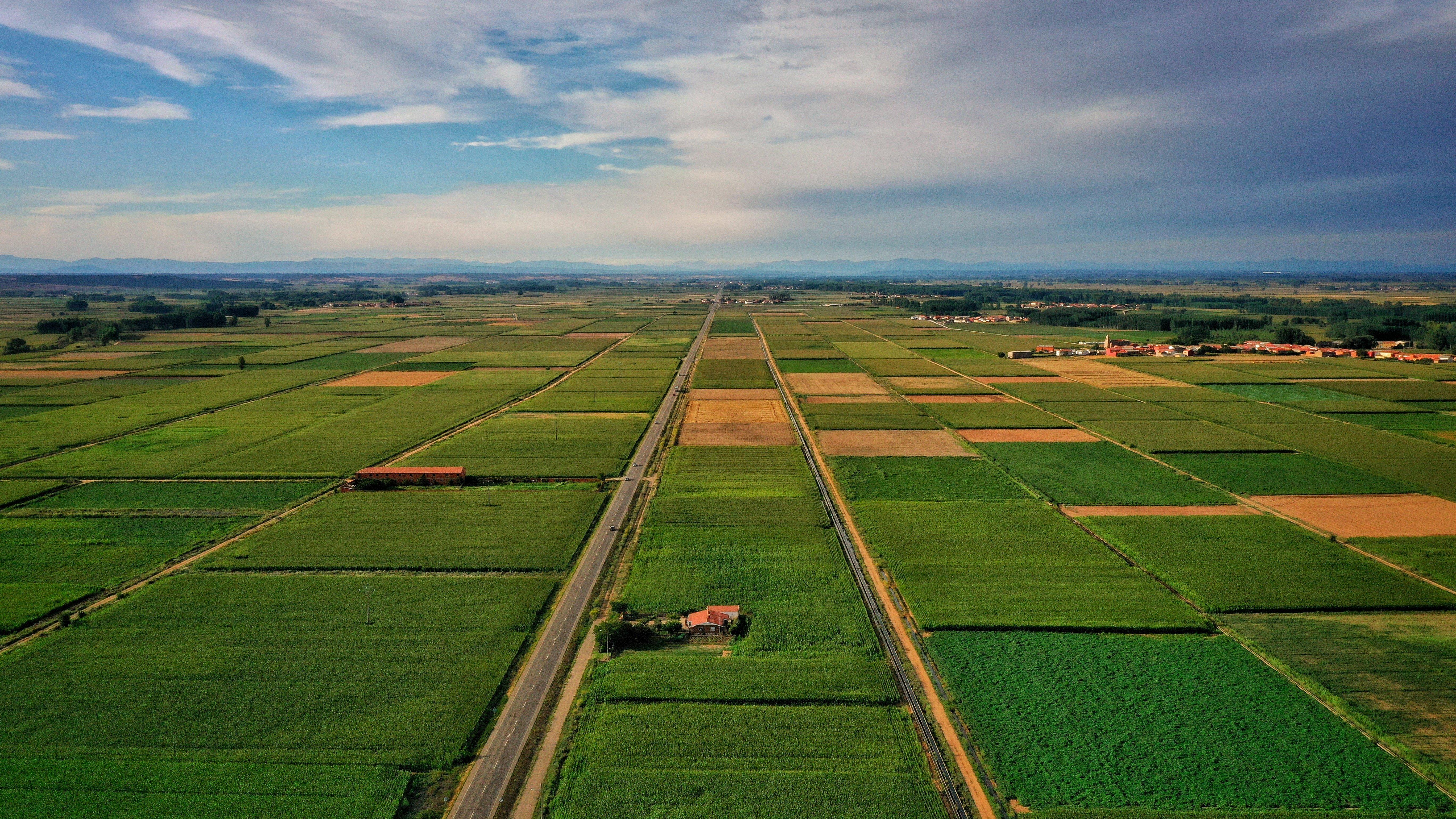 Vista aérea de campos de cultivo